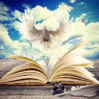 Методика формирования теоретико-литературной компетенции на уроках литературы